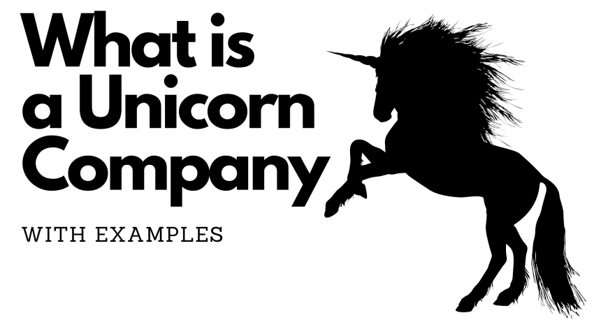 What is a Unicorn Company